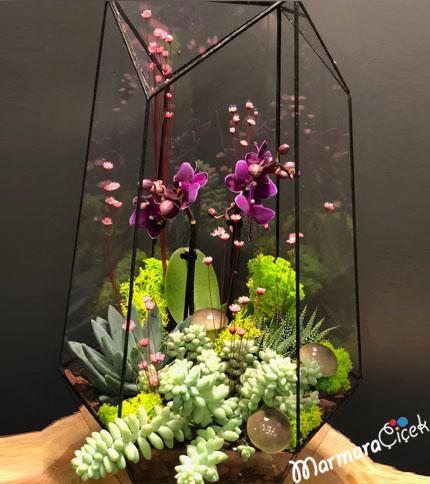 Prizmada Mor Mini Orkide
