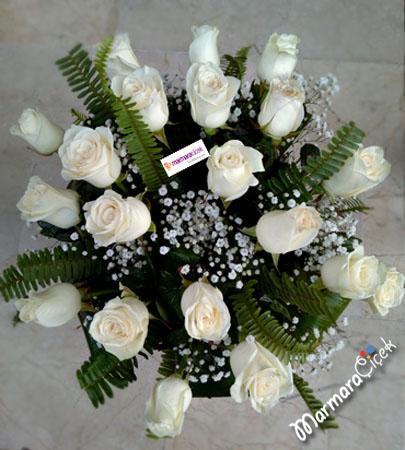 Beyaz Büyüsü