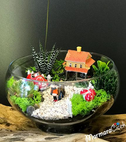 Evimizin Bahçesi