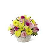 Sepette Kýr Çiçekleri