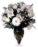 Vazoda Beyaz Çiçekler