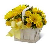 Sepette Sarý Çiçek Aranjman