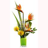 Tropik Çiçeklerden Arajman