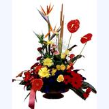 Karýþýk Çiçeklerden Arajman