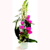 Pembe Ve Beyaz Çiçeklerden Boylu Arajman