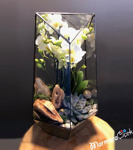 Prizmada Bougetto Orkidem