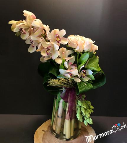 Orkidenin Asaleti