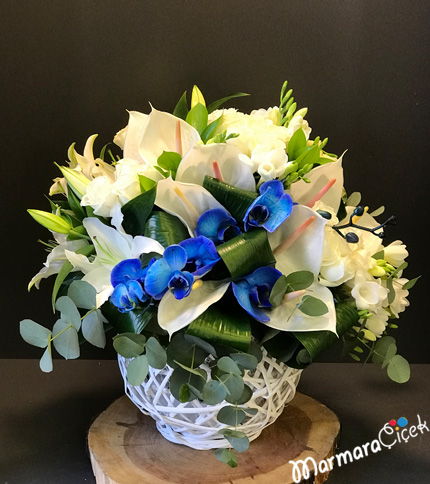 Sepette Mavi Orkideli Aranjman