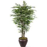 Yapay Ficus Benjamin(YEÞÝL)