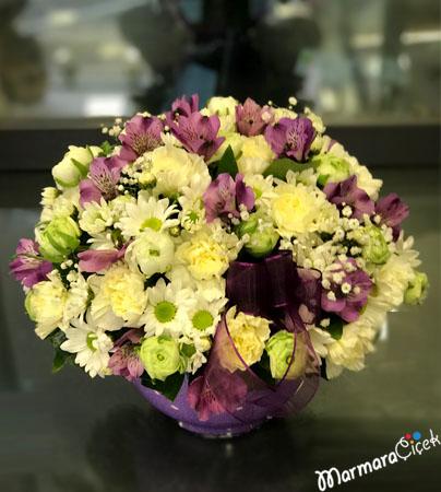 Morlu Beyazlý Çiçek