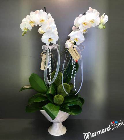 Oval Seramikte Beyaz Orkidem