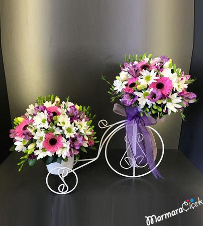 Bisiklette Bahar Çiçekleri