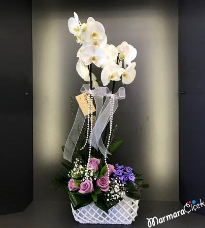Örgülü Seramikte Orkide Aranjmaný