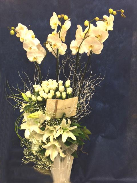 Jumbo Orkideli Aranjman