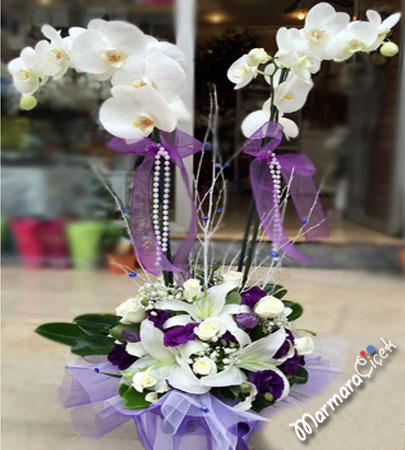 Orkideli Aranjman