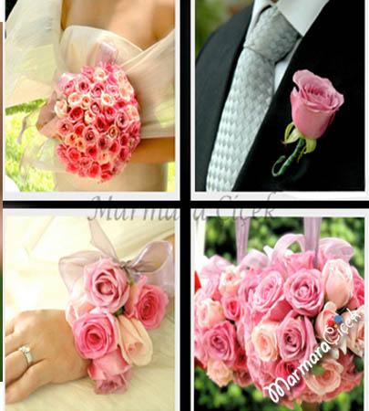 Tüm Çiçekler