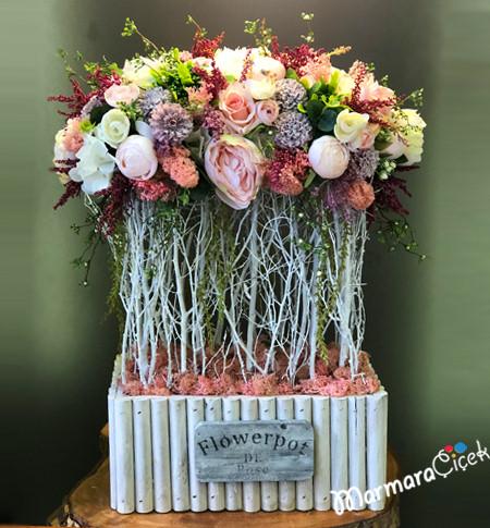 Kuru Dalda Renkli Çiçekler