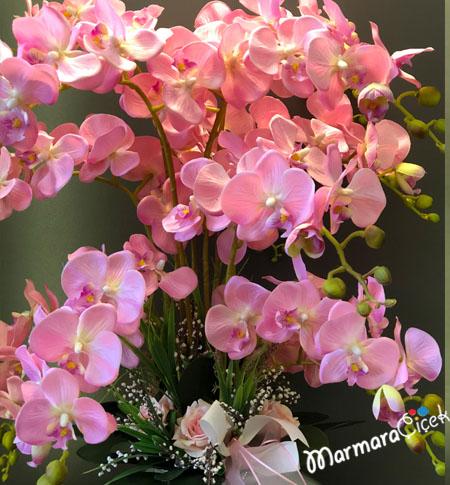 Pembe Orkide Aranjmaný